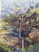 Deep Creek Reserve . Watercolour $400 framed Painting size 297x420mm