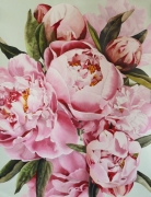 Pink Peonies Watercolour on Arches Paper Framed Size: 102cm x84cm SOLD